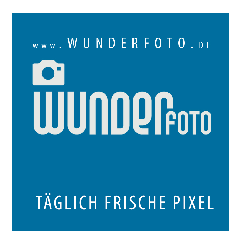 202003250541th14 6226063672121 wunderfotologo